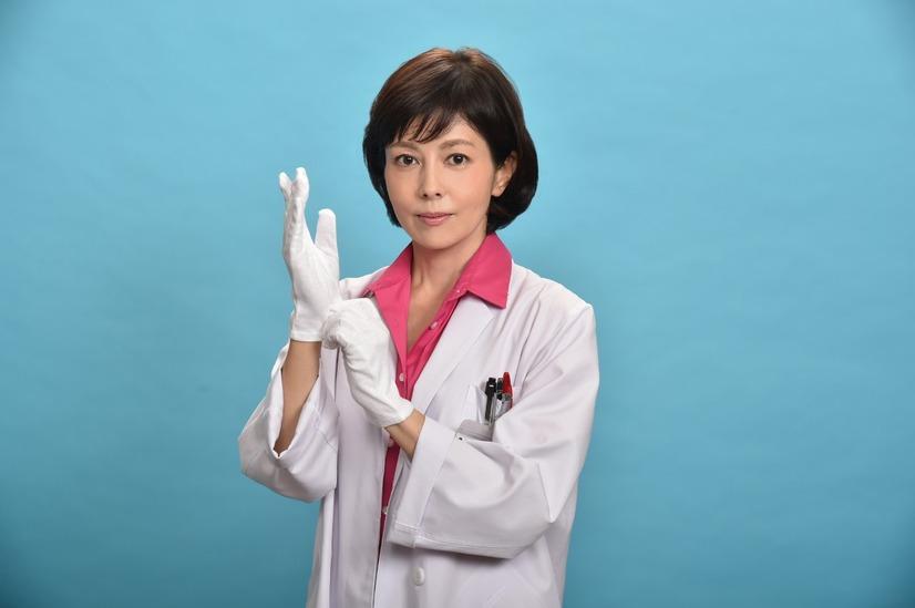 科捜研の女の画像 p1_32
