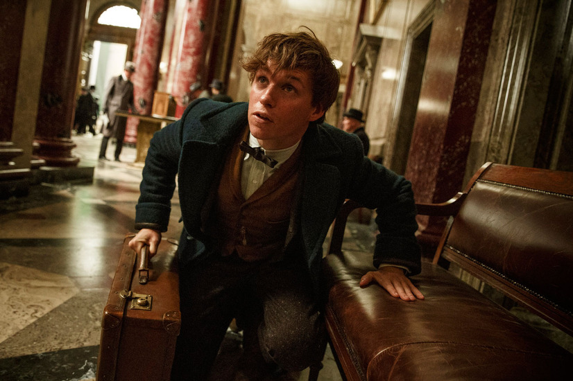 『ファンタスティック・ビーストと魔法使いの旅』(C) 2016 Warner Bros. Ent.  All Rights Reserved.  Harry Potter and Fantastic Beasts Publishing Rights (C) JKR.