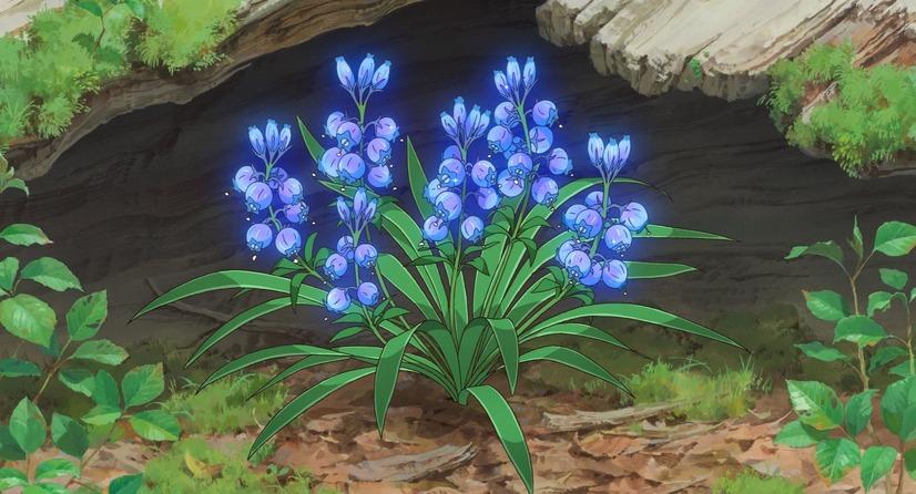 メアリと魔女の花の魔女の花