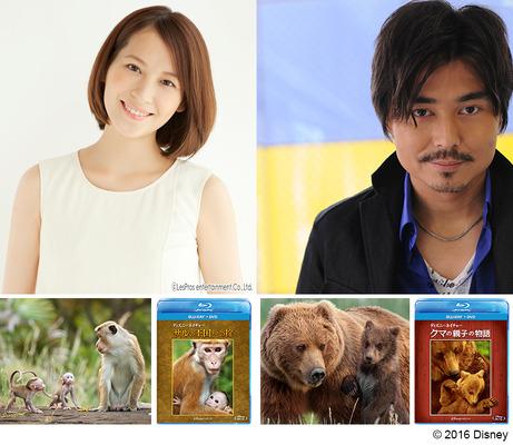 青木裕子 (タレント)の画像 p1_30