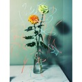 表参道・スパイラル「Nature Creations -Flowers-」。田中和人『pLastic fLowers』(2015)analog chromogenic print (hand printed by artist)Courtesy of Maki Fine Arts