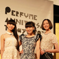 「Perfume ANNIVERSARY 10days 2015 PPPPPPPPPP」