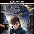 『ファンタスティック・ビーストと魔法使いの旅』4K ULTRA HD&3D&2D ブルーレイセット (c) 2016 Warner Bros. Ent. All Rights Reserved. Harry Potter and Fantastic Beasts Publishing Rights (c) JKR.