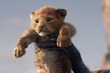 版 ライオン 声優 実写 キング