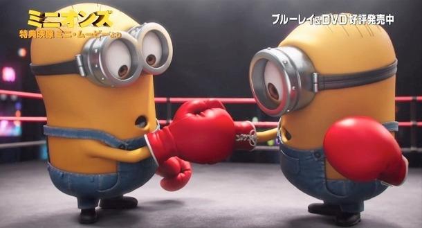 特別映像ミニオンズライバルのボクシング対決の行方は