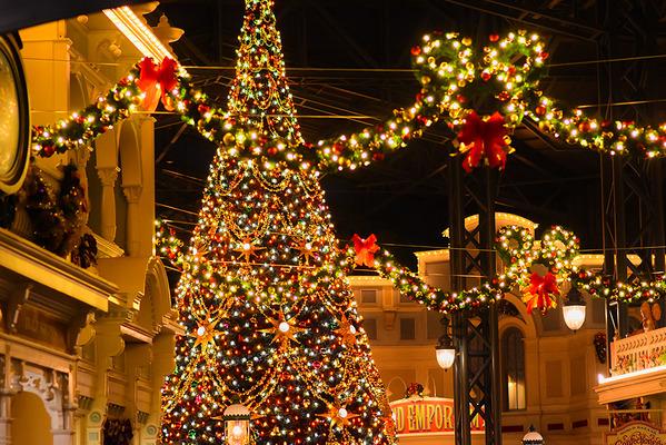 ディズニー】クリスマスのパーク...