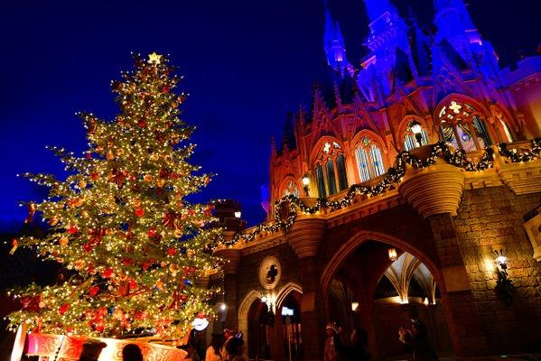 ディズニー生木のツリーに心温まる35周年のランドのクリスマス