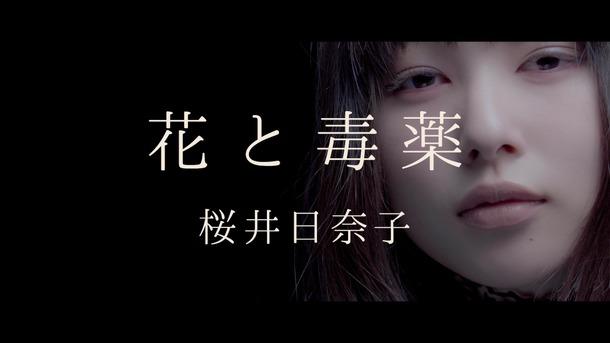 の 動画 ヤヌス 鏡