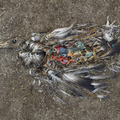 CF000478 Unaltered stomach contents of a Laysan albatross fledgling Midway Island, 2009 (from the series, Midway: Message from the Gyre).