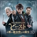 『ファンタスティック・ビーストと黒い魔法使いの誕生』3D&2Dエクステンデッド版 ブルーレイセット WIZARDING WORLD and all related characters and elements are trademarks of and (c) Warner Bros. Entertainment Inc. Wizarding World(TM) Publishing Rights (c) J.K. Rowling. (c) 2018 Warner Bros. Entertainment Inc. All rights reserved.