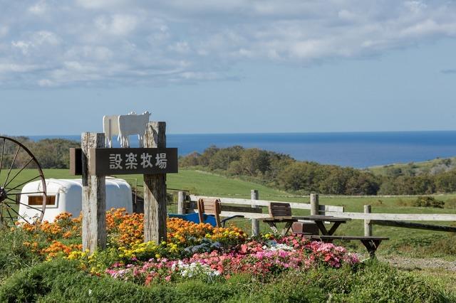 ロケ地となった海の見える牧場の実風景