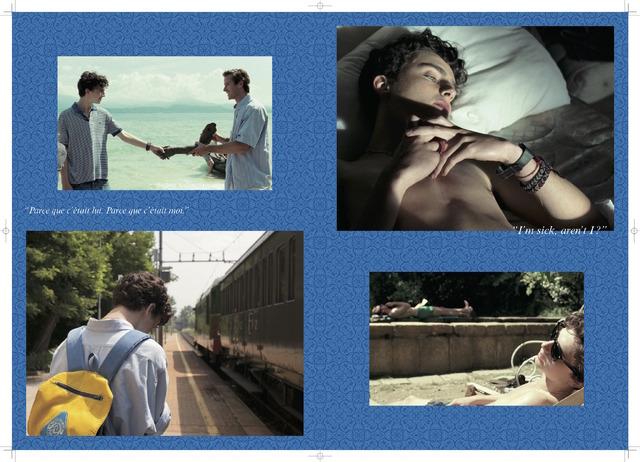 『君の名前で僕を呼んで』豪華版パンフレット (C)Frenesy, La Cinefacture