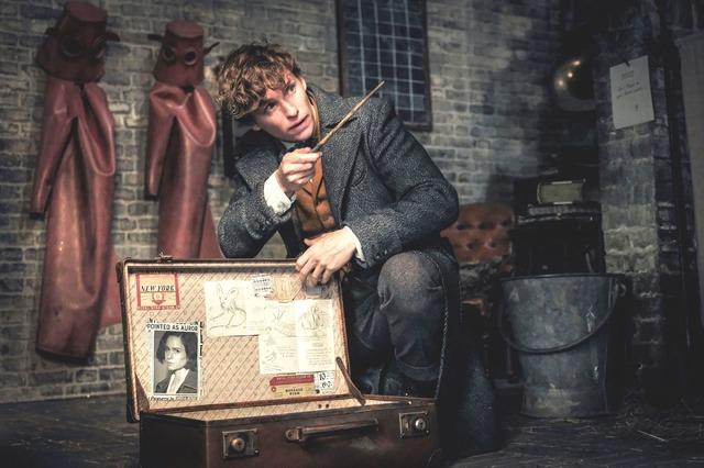 『ファンタスティック・ビーストと黒い魔法使いの誕生』 (C)2018 Warner Bros. Ent.  All Rights Reserved.Harry Potter and Fantastic Beasts Publishing Rights (C)J.K.R.