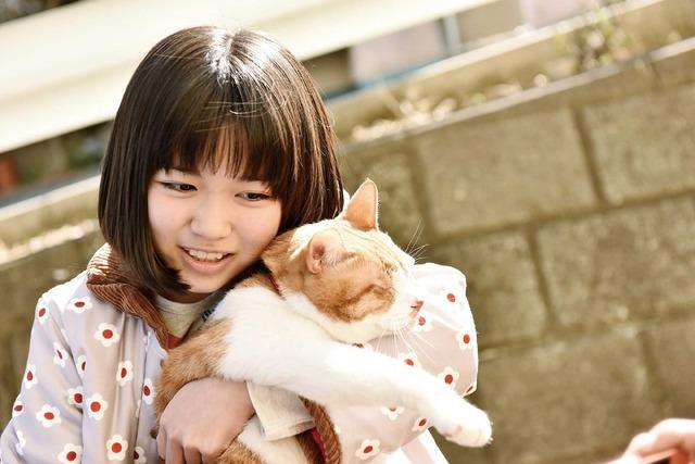 『トラさん~僕が猫になったワケ~』 (C) 板羽皆/集英社・2019「トラさん」製作委員会