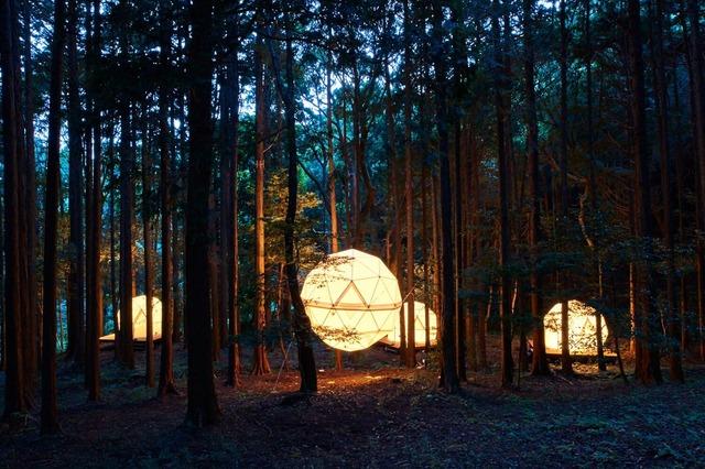 夜空と交差する森の映画祭2019開催地