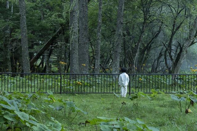 『約束のネバーランド』 (C)白井カイウ・出水ぽすか/集英社 (C)2020 映画「約束のネバーランド」製作委員会