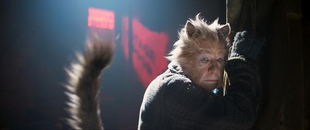 ガス(声・宝田明)『キャッツ』(C)2019 Universal Pictures. All Rights Reserved.