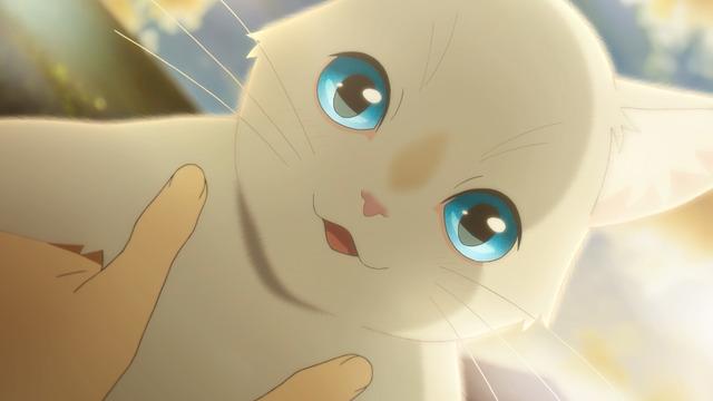『泣きたい私は猫をかぶる』(C) 2020 「泣きたい私は猫をかぶる」製作委員会