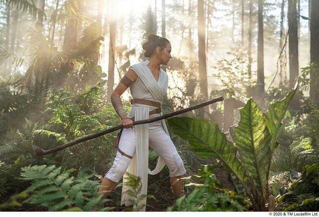 『スター・ウォーズ/スカイウォーカーの夜明け』 (C)2020 & TM Lucasfilm Ltd.