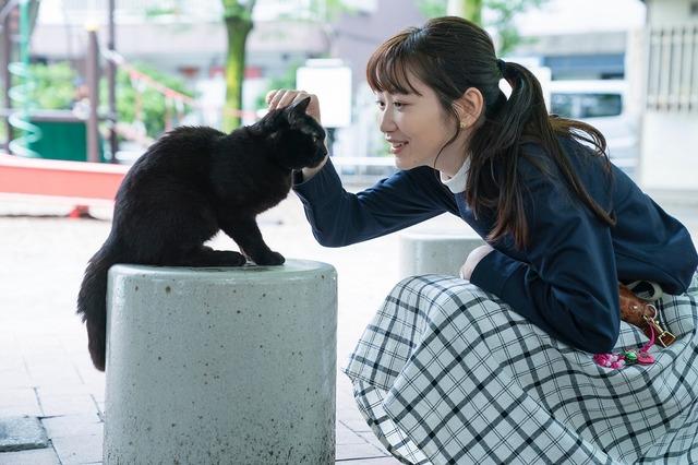 銀座夏野 編/「銀座黒猫物語」(C)SPEJ KANSAI TV