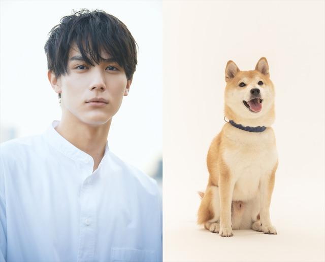 中川大志-きぃ(太郎役)(C)2021「犬部!」製作委員会