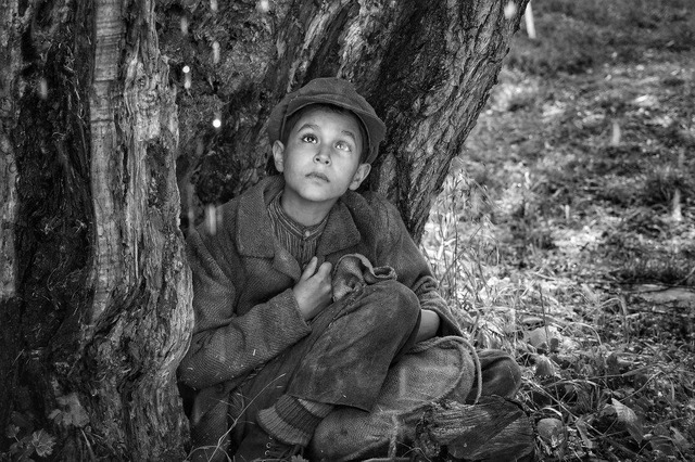 『異端の鳥』 COPYRIGHT@2019 ALL RIGHTS RESERVED SILVER SCREEN CESKA TELEVIZE EDUARD & MILADA KUCERA DIRECTORY FILMS ROZHLAS A TELEVIZIA SLOVENSKA CERTICON GROUP INNOGY PUBRES RICHARD KAUCKY
