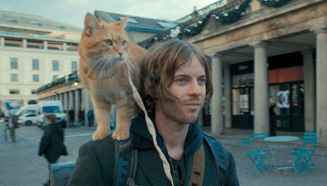 『ボブという名の猫 幸せのハイタッチ』 -(C) 2016 STREET CAT FILM DISTRIBUTION LIMITED ALL RIGHTS RESERVED.
