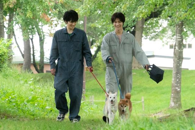 『犬部!』(C)2021『犬部!』製作委員会