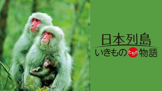『日本列島いきものたちの物語』