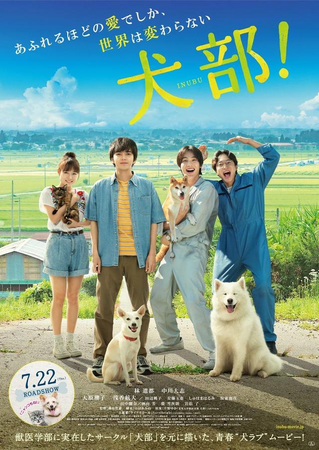 『犬部!』本ビジュアル (C)2021『犬部!』製作委員会