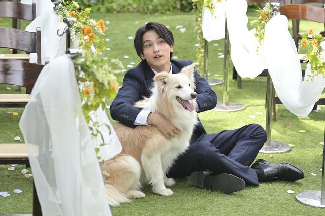 「着飾る恋には理由があって」最終話(C)TBS